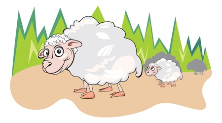 flock of sheep: Sheep or Ovis aries, Herd, White, Smiling, Mother and Child, vector illustration