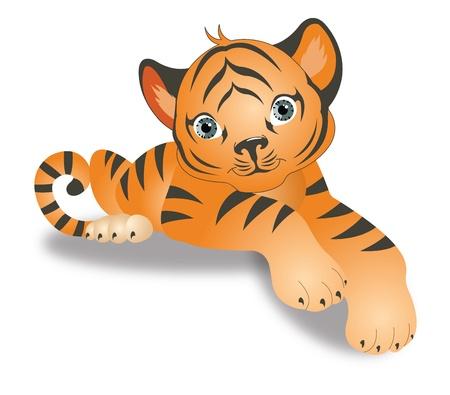 panthera: Tiger, Giovane Cucciolo, arancione con strisce nere, illustrazione vettoriale