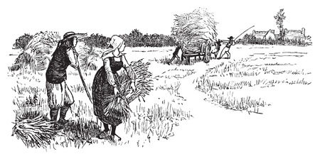 agriculture field: Harvest in Brittany, vintage engraved illustration. Journal des Voyages, Travel Journal, (1879-80).
