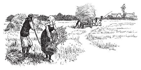old farmer: Harvest in Brittany, vintage engraved illustration. Journal des Voyages, Travel Journal, (1879-80).
