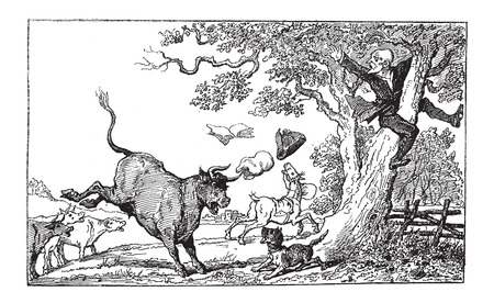 chased: Doctor Syntax Being Chased by a Bull, by Thomas Rowlandson, vintage engraved illustration. Le Magasin Pittoresque - Larive and Fleury - 1874