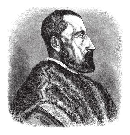 herboristeria: Siglo 16 (1557) grabado de Ogier Ghislain de Busbecq, un escritor flamenco, Herbolario y diplom�tico austriaco, cosecha ilustraci�n grabada. Le Magasin Pittoresque - Larive y Fleury - 1874 Vectores