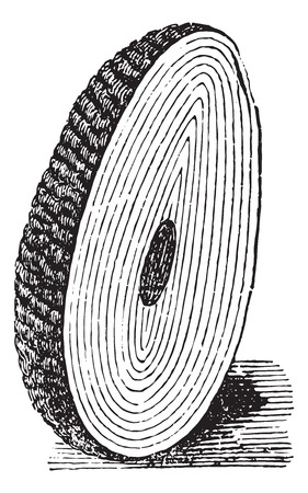 Calculation of the bladder form of a central core and a plurality of laminated layers, vintage engraved illustration. Usual Medicine Dictionary by Dr Labarthe - 1885. Illustration
