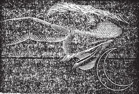 Phosphene front, vintage gegraveerde illustratie. Gebruikelijke Geneeskunde Woordenboek - Paul Labarthe - 1885.