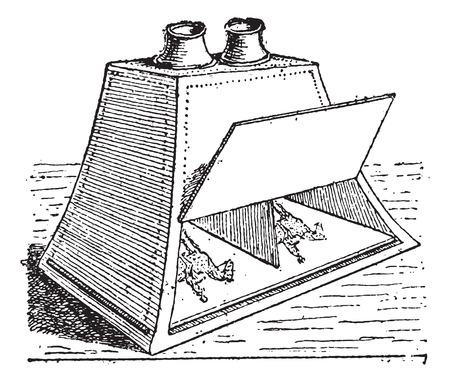 viewer: Stereoscope, vintage engraved illustration. Dictionary of words and things - Larive and Fleury - 1895.