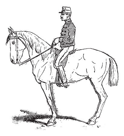 flexible: Rassembler, an exercise meant to increase mobility of the horse while training, vintage engraved illustration. Dictionary of words and things - Larive and Fleury - 1895. Illustration