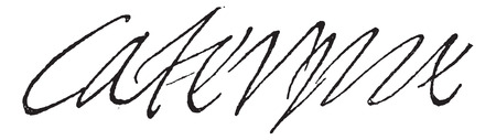 black maria: Signature of Catherine de Medici, Queen of France, wife of Henry II (1519-1589), vintage engraved illustration. Dictionary of words and things - Larive and Fleury - 1895.