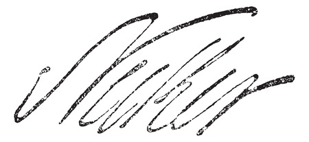 Signature of Jacques Necker (1732-1801), vintage engraved illustration. Dictionary of words and things - Larive and Fleury - 1895.
