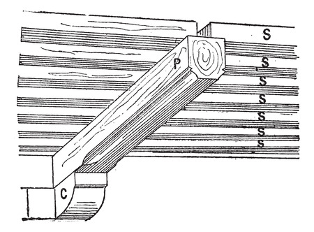 joist: Old engraved illustration of Joist (architecture) with (SS) Joist, P (beam) C (cantilever). Dictionary of words and things - Larive and Fleury ? 1895