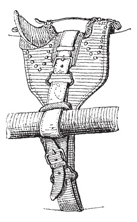 girth: Cinch or Girth, vintage engraved illustration. Dictionary of words and things - Larive and Fleury - 1895.