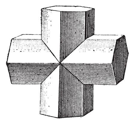 Stauroliet geïsoleerd op een witte achtergrond, vintage gegraveerde illustratie. Woordenboek van woorden en dingen - Larive en Fleury - 1895.