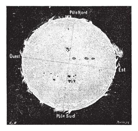 Old engraved illustration of the Sun with solar disk protrusions observed in Plein Soleil in Rome, July 23, 1871, from spectroscope at The College of Equatorial Romain. Dictionary of words and things - Larive and Fleury