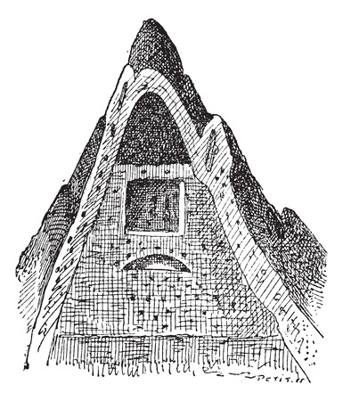 Termite nest, vintage engraved illustration. Dictionary of words and things - Larive and Fleury - 1895.