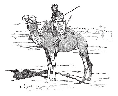 nomadic: Tuareg, tribe of the Sahara, vintage engraved illustration. Dictionary of words and things - Larive and Fleury - 1895. Illustration
