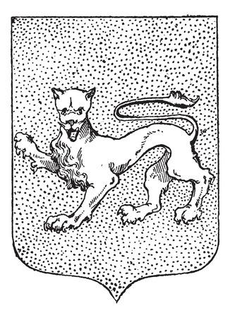 hanedan arması: Arms Leopard Coat, bağbozumu oyulmuş illüstrasyon. Larive ve Fleury - - 1895 Kelimeler ve Şeyler Sözlüğü Çizim