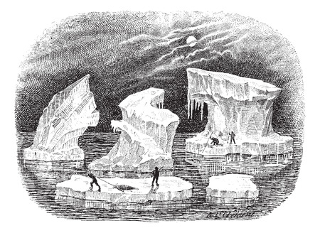 floating: Icebergs, vintage engraved illustration. Dictionary of words and things - Larive and Fleury - 1895. Illustration