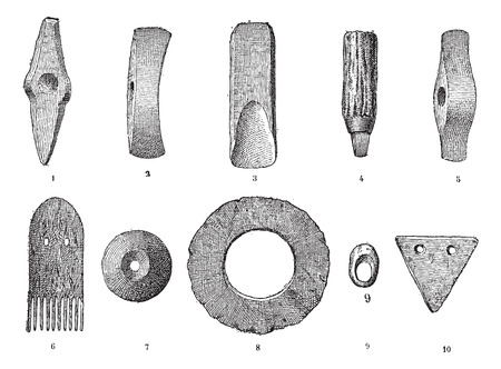 yew: Age lake, various objects from lake stations, vintage engraved illustration. Dictionary of words and things - Larive and Fleury - 1895.