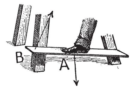 apalancamiento: Clase 3 Palanca, cosecha ilustraci�n grabada. Diccionario de palabras y las cosas - Larive y Fleury - 1895 Vectores