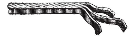 неочищенный: Сырая Сад мотыга, старинные гравированные иллюстрации. Словарь слов и вещей - Larive и Флери - 1895