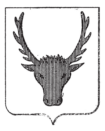 armorial: Moose Coat of Arms, showing moose head, vintage engraved illustration. Dictionary of Words and Things - Larive and Fleury - 1895