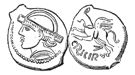 Ancient Bronze Coin, showing Head (front) and Horse (back), vintage engraved illustration. Dictionary of Words and Things - Larive and Fleury - 1895 Vettoriali
