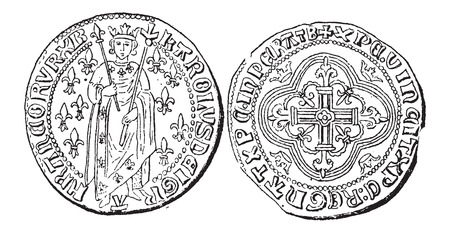 Coin Currency, during the rule of Charles VII of France, vintage engraved illustration. Dictionary of Words and Things - Larive and Fleury - 1895