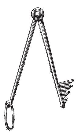フジツボ、ヴィンテージの図を刻まれています。辞書の言葉や物事 - Larive 氏 - 1895