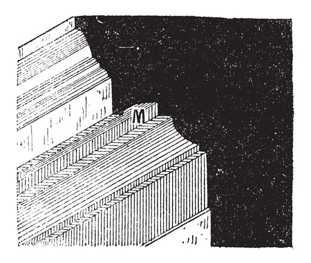 Mouchette, in Architecture, vintage engraved illustration. Dictionary of Words and Things - Larive and Fleury - 1895