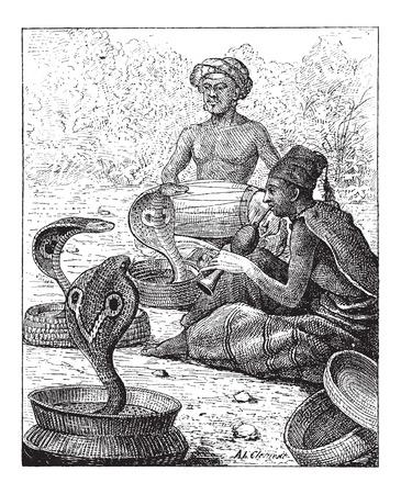 serpiente cobra: Cobra o Naja sp., Mostrando encantadores de serpiente, vintage, ilustración, grabado. Diccionario de palabras y las cosas - Larive y Fleury - 1895
