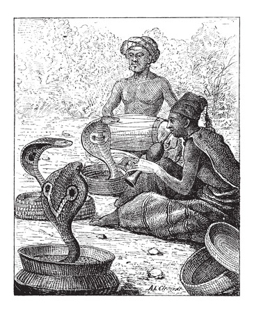 charmer: Cobra or Naja sp., showing Snake Charmers, vintage engraved illustration. Dictionary of Words and Things - Larive and Fleury - 1895
