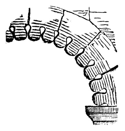 span: FR Intrados rounded lobe (XI to XII century), vintage engraved illustration Illustration