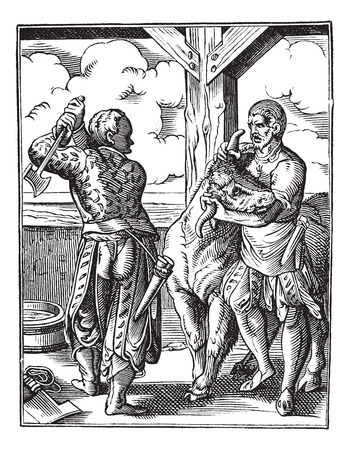 valet: Old engraved illustration of butcher with his valet getting ready to slaughter an animal (eighteenth century). Industrial encyclopedia E.-O. Lami - 1875. Illustration