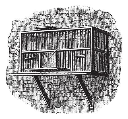 Area or a pigeon cage, vintage engraved illustration.Trousset encyclopedia (1886 - 1891). Ilustração