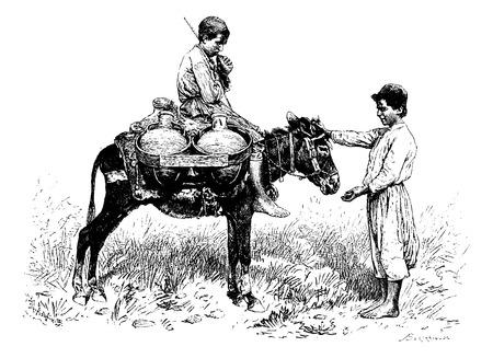 burro: Portador del Agua de Tiro, Líbano, ilustración de la vendimia grabado. Le Tour du Monde, Diario de viaje de 1881 Vectores
