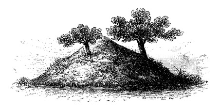 Termite Mound in Southern Africa, 4 meters high and covered by vegetation, engraving based on the English edition, vintage illustration. Le Tour du Monde, Travel Journal, 1881