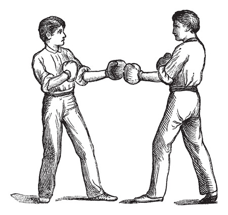 Two boxers in a fighting postion, vintage engraving. Old engraved illustration of two boxers in a fighting postion.