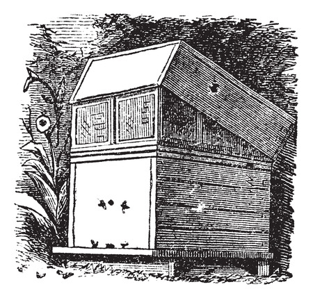 Beehive or Beehives, vintage engraving. Old engraved illustration of Beehive.