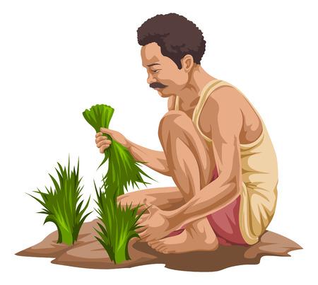 Vector illustratie van boer plukken groenten in boerderij.