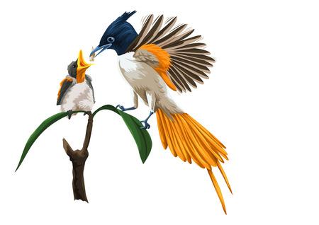 Ilustración del vector del pájaro alimentando a los jóvenes de los pollitos. Ilustración de vector