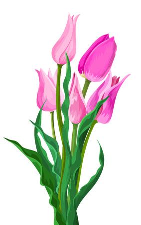 pink flower: Illustration of pink flower and green leaves. Illustration