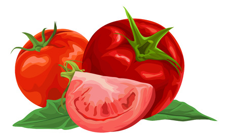 Illustration of organic red tomatoes.