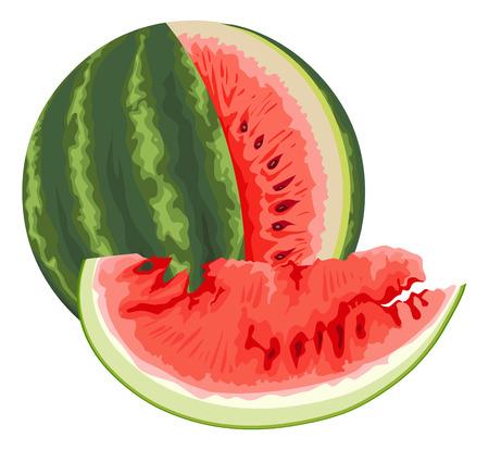 indulgência: Ilustra��o de melancia fresca. Ilustração