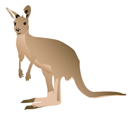 Kangaroo Ilustração