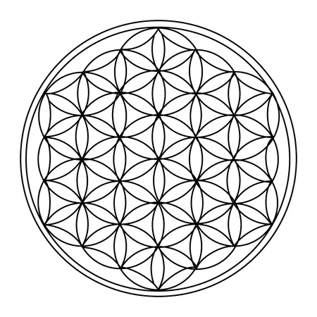 The Flower of Life Stock Illustratie