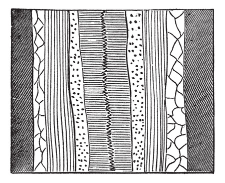 Geological Vein, illustration showing quartz vein (center) splitting a baryte layer into two, vintage engraved illustration