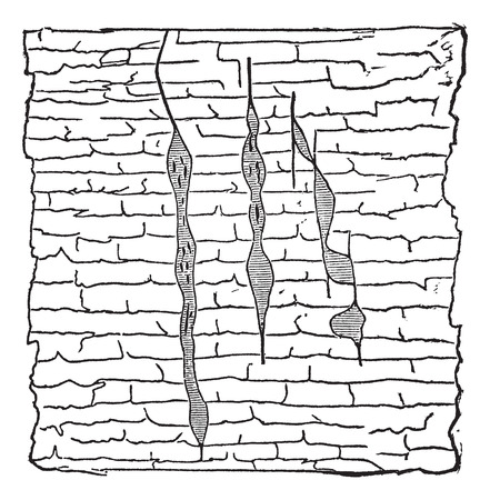 gash: Geological Vein, illustration showing vertical gash veins of lead ore (shaded) within galena (unshaded), vintage engraved illustration