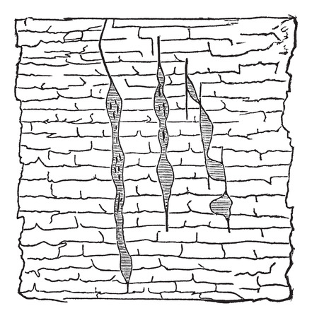 crystallization: Geological Vein, illustration showing vertical gash veins of lead ore (shaded) within galena (unshaded), vintage engraved illustration