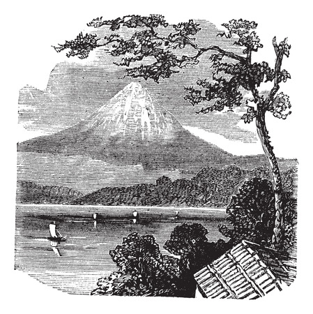 Old engraved illustration of Mount Fuji, with Lake Kawaguchi and trees in front.