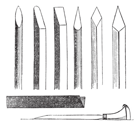 Old engraved illustration of wood carving hand tools with different sizes and types, isolated on a white background. Illustration
