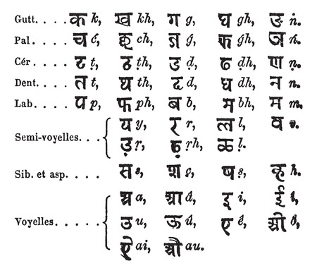 lingual: Old engraved illustration of Standard Alphabet by Lepsius.